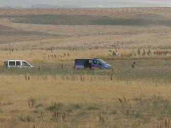 Ekipler 4 Gündür Leyla Aydemir'in Tokası ve Muskasını Arıyor