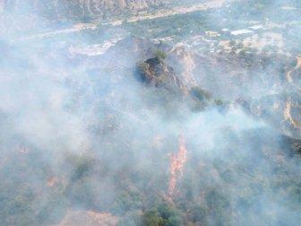 Aydın, Nazilli'de Ziraat Alanında Başlayan Yangın Ormana Sıçradı