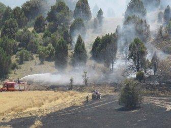 Konya, Beyşehir'de Ormanlık Alana Sıçrayan Yangın