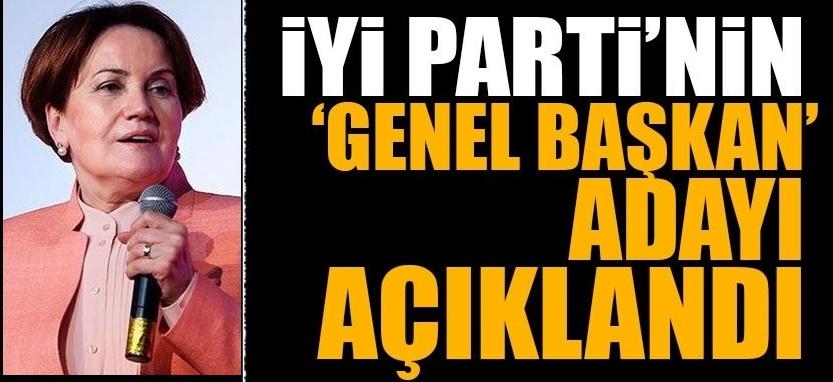 Son Dakika : Meral Akşener'in istifasının ardından Genel Başkan adayı belirlendi
