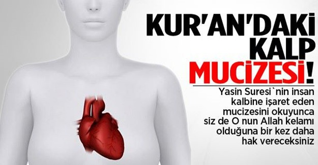 Kuran'ı Kerim'deki kalp mucizesi!