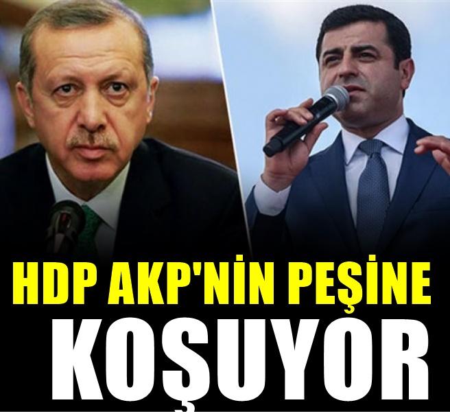 HDP'den Bahçeli'yle ipleri atan Erdoğan'a çağrı: Gelin masaya oturalım