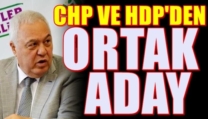 CHP ve HDP'den Flaş hazırlık! İşte ortak adayları