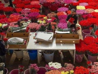 Türkiye'den Gönderilen Çiçekler 20 Ülkenin Kadınlarını Sevindirecek