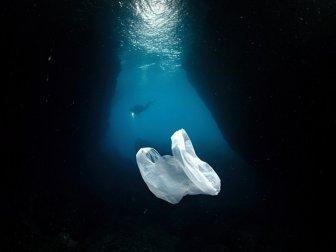 Denizlerde Plastik Kirliliğiyle Mücadele İçin 400 Bin İmza
