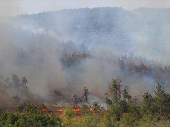 Edirne, Keşan'daki Orman Yangını Söndürüldü