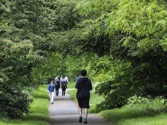 Sağlıklı Uyku İçin Açık Havada Yürüyün