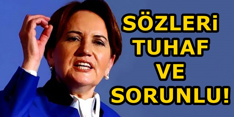 Karar yazarından Meral Akşener'e sert eleştiri