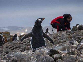 Antarktika Seferleri Etkisini Gösteriyor