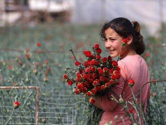 Türk Çiçeği 50 Ülkenin Kadınları İçin Hazırlanıyor