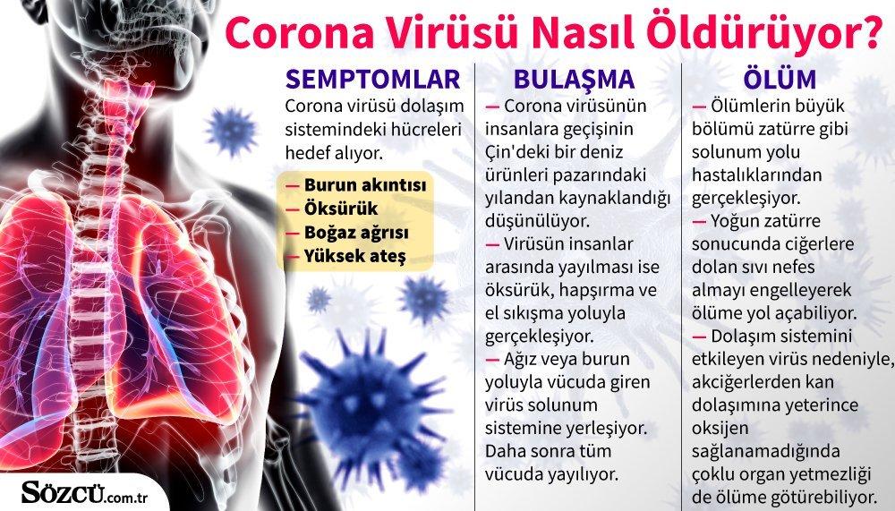 Corona virüs nasıl bulaşıyor ?  Corona virüsü belirtileri neler?