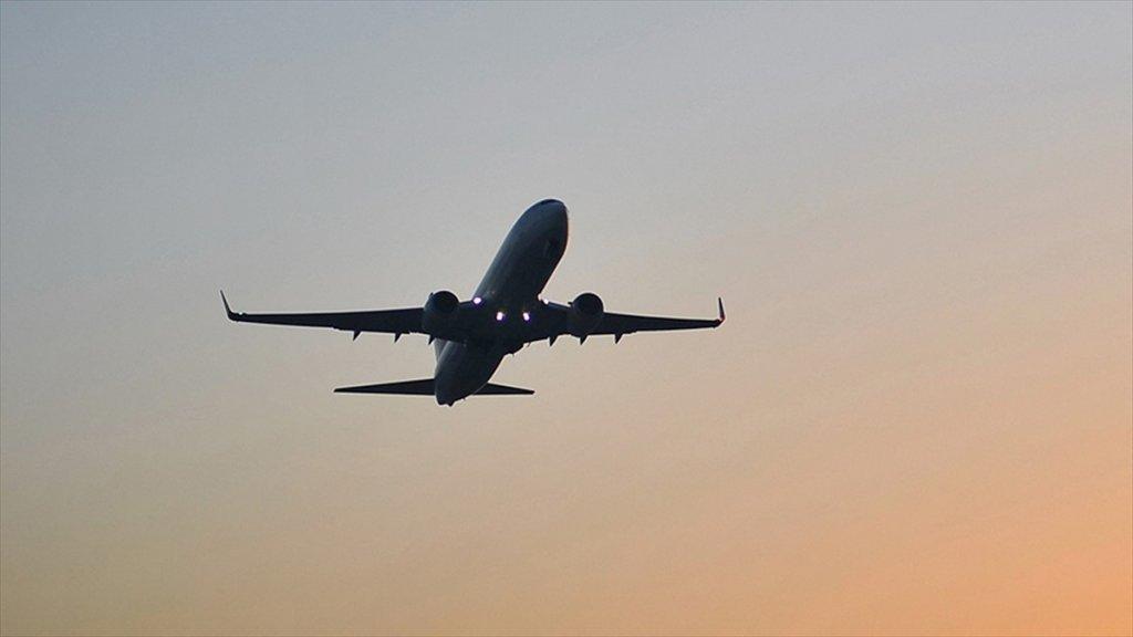Türkiye İle İran Arasındaki Yolcu Uçuşları Durduruldu