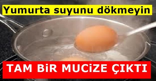 Kaynamış yumurta suyunu sakın dökmeyin bu mucizesini öğrenin