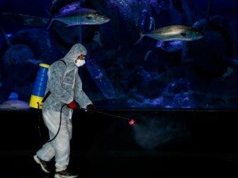 Antalya Akvaryum'da Dezenfekte İşlemi Yapıldı