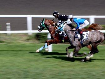 Ertelenen At Yarışları İçin Karar Mayıs Ayında Verilecek