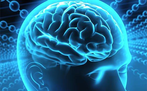 Beyin Damar Tıkanıklığına Bağlı Felçlerde Tanı ve Erken Tedavi