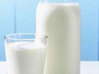 Keçi sütünün şaşırtan faydaları