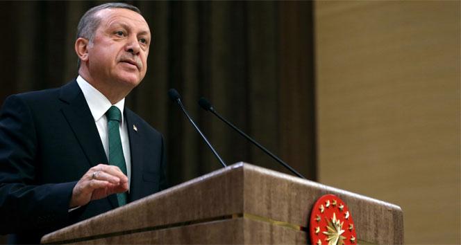 Cumhurbaşkanı Erdoğan, 4 üniversitenin rektörünü atadı