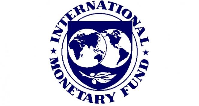 Türkiye'nin IMF'de oy gücü arttı