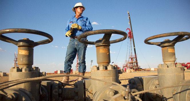 Rusya'nın doğalgaz kesintisi Türkiye'yi nasıl etkiler ?