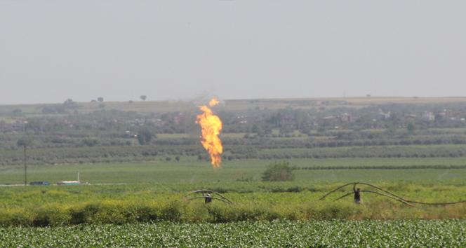 Tarladan doğalgaz çıktı