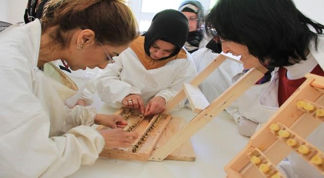 Kadın Arıcılara Eğitim