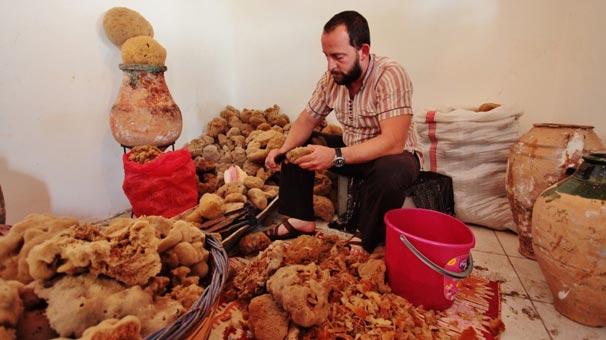 Son süngerci İbrahim Totoz sezona hazır