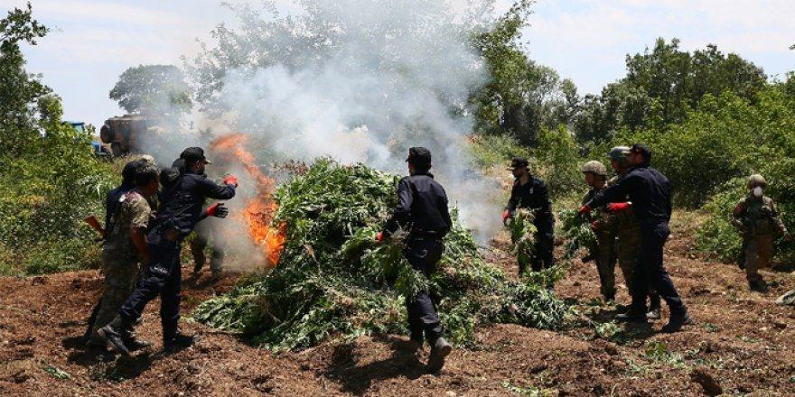 PKK'nın finans kaynakları yok edildi!