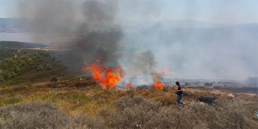 Milas, Boğaziçi köyü mevki alev alev yanıyor
