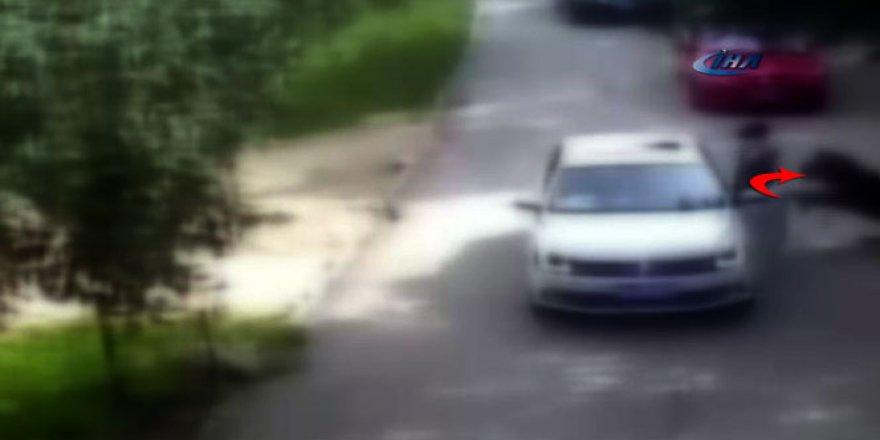 Çin'de kaplan dehşeti: 1 ölü, 1 ağır yaralı