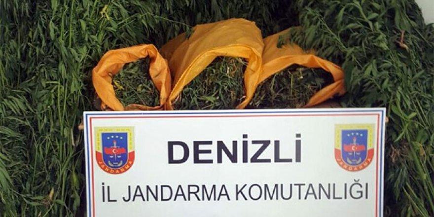 Denizli'de uyuşturucu operasyonu: 718..