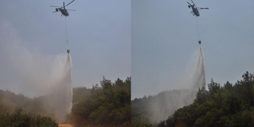İzmir'de 4 ayrı orman yangınında 300 hektar kül oldu!