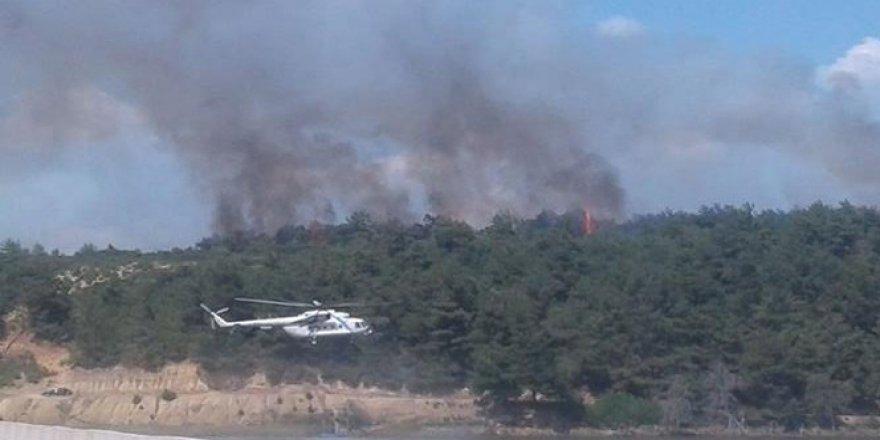 Edirne, Keşan'da orman yangını!