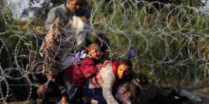 Türkiye-Bulgaristan sınır hattında 158 kaçak göçmen yakalandı