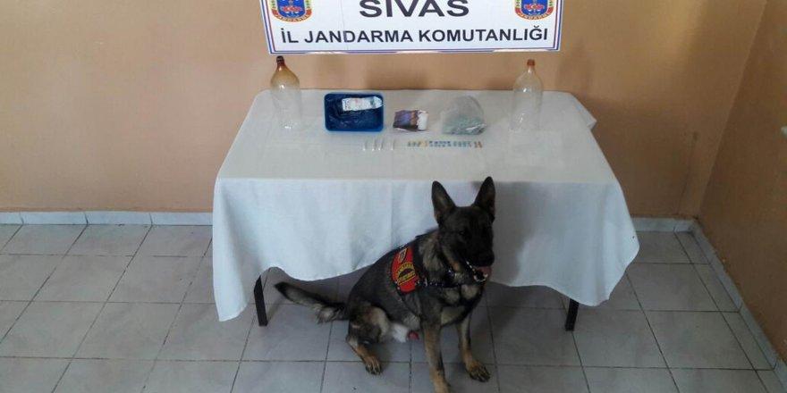 Sivas'ın Kangal ilçesinde uyuşturucu operasyonu