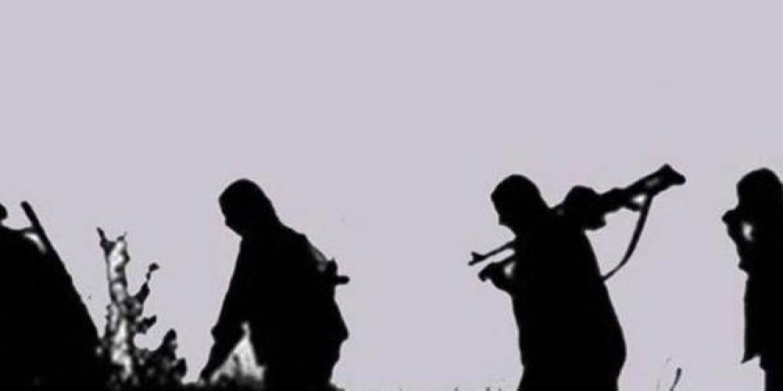 Muş'ta 16 Kişilik PKK'lı Terörist Grup Kıstırıldı