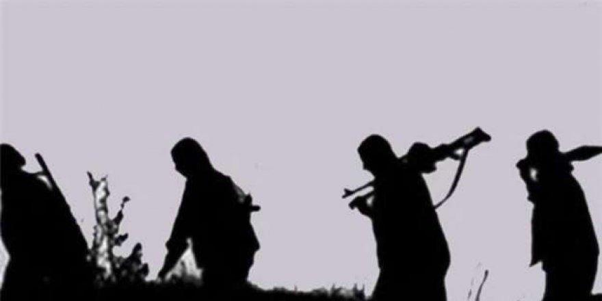 Bitlis, Tatvan'da Terör Operasyonu: 4 Gözaltı