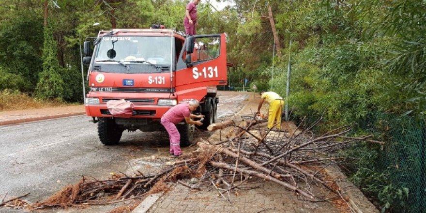 Antalya, Manavgat'ta fırtına hayatı felç etti