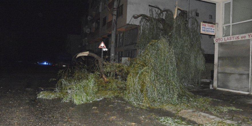 Düzce, Akçakoca'da hortum: 3 yaralı