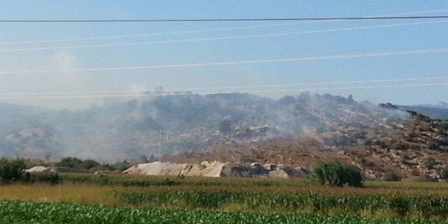 Muğla, Milas'ta Yangın