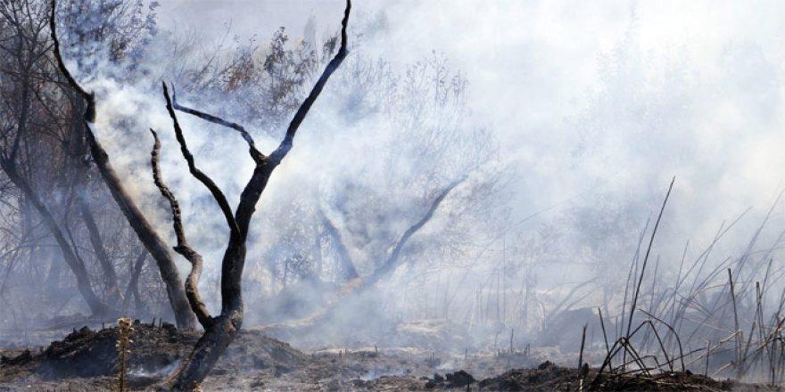 Torpilden çıktan yangın ortalığı kül etti!