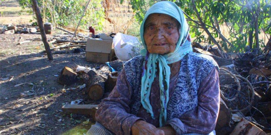 Yaşlı kadının dağda çile dolu hayatı