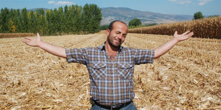 Tarlasından çaldırdığı 19 ton silajlık mısırı buldu