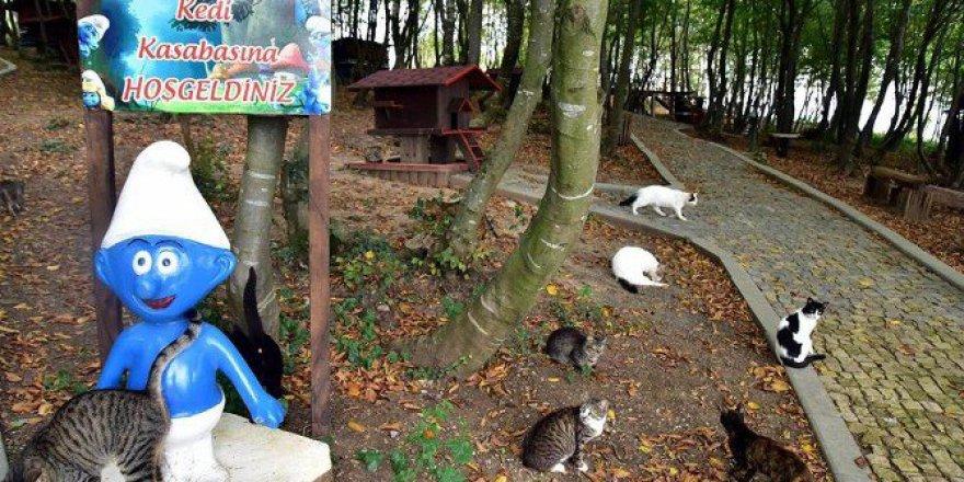 Samsun'da 1 Yılda 6 Bin 744 Hayvanın Bakımı Yapıldı