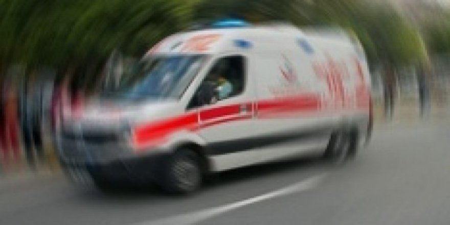 Freni boşalan kamyonet devrildi: 3 yaralı