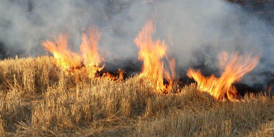 Anız Yakan 10 Çiftçiye 7 Bin 335 Lira İdari Para Cezası