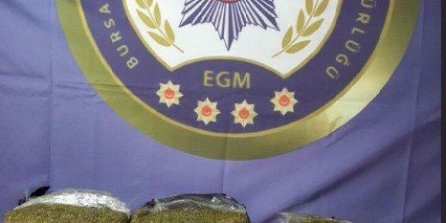 Bursa'da Otobüs Terminalinde 25 Kilo Esrar Ele Geçirildi