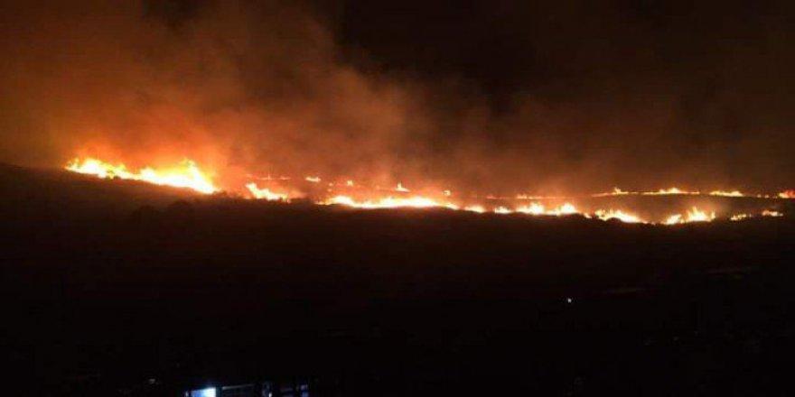 Bursa, Mudanya'da Orman Yangını!