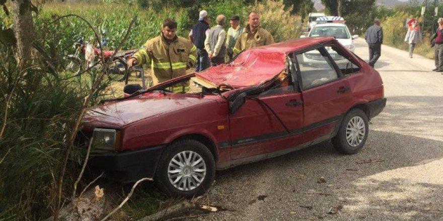 Balıkesir'de Seyir Halindeki Aracın Üzerine Ağaç Düştü: 1 Ölü, 1 Yaralı