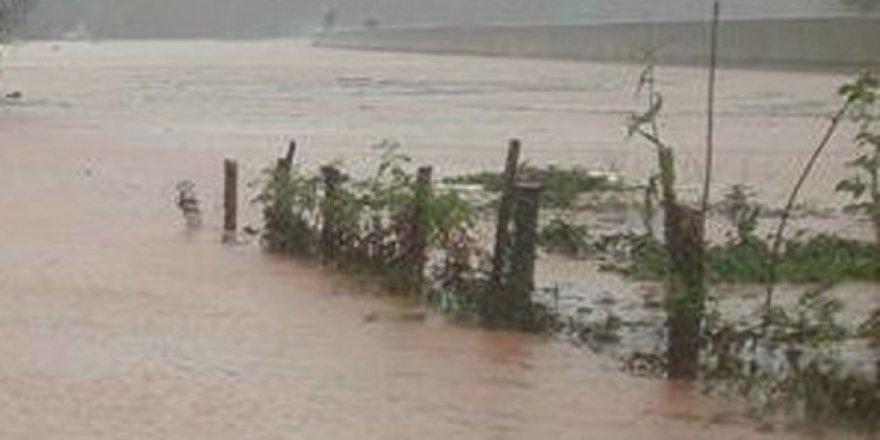 Vietnam'da sel felaketi! 11 ölü